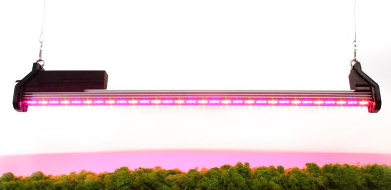 Светодиодная фитолампа Spectra RED